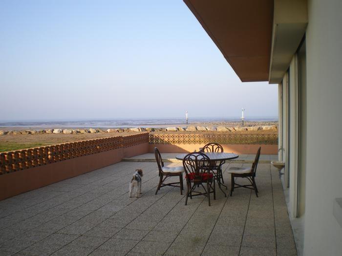 La terrasse de 60 m2 avec le salon de jardin