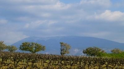 Authentique ferme en campagne vue sur le Ventoux - Faucon