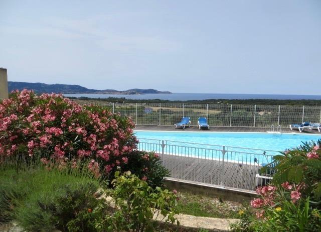Piscine de la résidence et vue sur baie de Calvi