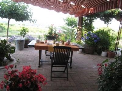 Location vacances Saint-Pargoire -  Maison - 6 personnes - Jardin - Photo N° 1