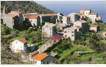 Location vacances Sollacaro -  Appartement - 6 personnes - Barbecue - Photo N° 1