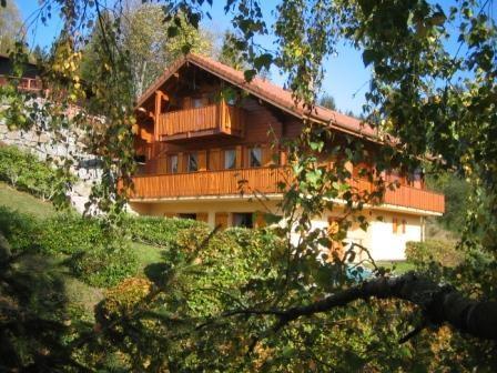 Location vacances Gérardmer -  Maison - 12 personnes - Chaise longue - Photo N° 1