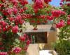 Casa de turismo rural - Arles