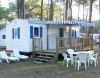 Mobile home - Plein Air Locations - Camping LE VIVIER - Biscarrosse