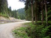 Maison altitude 1000 mètres Montagne Forêt Nature