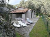 Dans une oliveraie de sept hectares nos maisons traditionnelles en pierre.