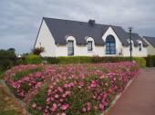 Location vacances Saint Pol de Leon - appartement dans maison...
