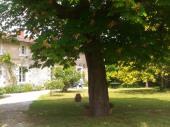 charmante maison de famille avec piscine , 19P avec un grand jardin clos et tranquille.