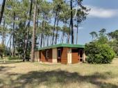 Bungalow 6 personnes en plein cœur de la forêt Landaise