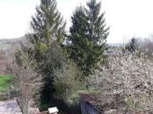 La petite maison dans les Ardennes