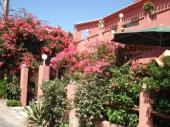 MACINAGGIO Appt- Rdc avec 3 pieces 2 terrasses, calme et fleurie