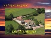 """Gîte  La Vigne au Gain """"Les Mésanges"""""""