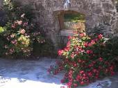 Location maison St Andre En Vivarais - 8 à 10 personnes - 450 à 900 €  semaine