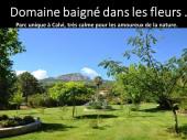 Domaine avec Villas(2à8 pers.) piscine au cœur d'un beau parc fleuri