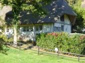 Gîte de charme (4/6 pers) dans parc d'un Manoir Normand, belle vue, calme, chevaux sur place. Le Havre:45mn,Rouen: 35 mn