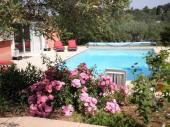 Petite maison provençale au milieu des oliviers