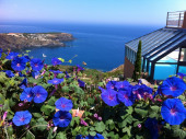 Magnifique T3 avec vue panoramique sur la mer, piscine devant les portes fenêtres sur la terrasse face à la mer.