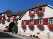 "GITE centre Alsace ""le Cigogneau"""
