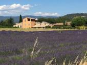 Grande maison 6 a 8 personnes VTT fournis Calme et Nature en Luberon
