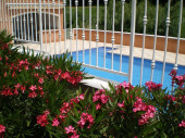 Appartement climatisé avec grande piscine