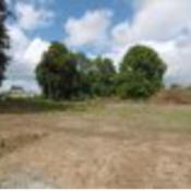 Terrain 967 m² Missillac (44780)