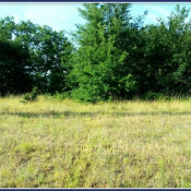Terrain 750 m² Saint-Germain-du-Salembre (24190)