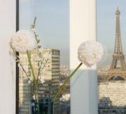 Appartement - Paris 15e Arrondissement
