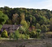 Maison - Schorbach