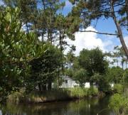 Camping - Les Viviers - Lège-Cap-Ferret