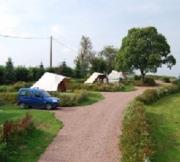 Camping - Rose de Provins - Gien-sur-Cure