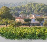 Gîte - Roquefort-la-Bédoule