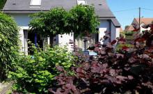 310€ la semaine en novembre ,  maison 2 chambres, jardin et sauna, WIFI, ANCV, Animaux acceptés (me contacter) , à 5 m