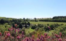 3 Gîtes de 2 à 28 p. sur Domaine avec Rivière privée sur 12 ha : Le Domaine de La Rassègue
