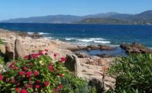 location estivale pieds dans l'eau,accès direct à la mer, vue panoramique exceptionnelle comme sur la photo