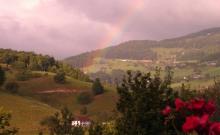 Au centre de l'Alsace, entre vignes et montagne