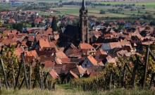 """Gîte """" Au repos de l'ours """" en centre Alsace"""