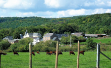 ARDENNE gîte rural accès PMR. Le standing à prix raisonnable. Proche de DURBUY - AYWAILLE - SPA-FRANCORCHAMPS - LIEGE