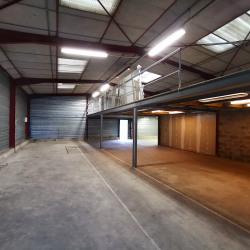 Location Local d'activités Champigny-sur-Marne 600 m²