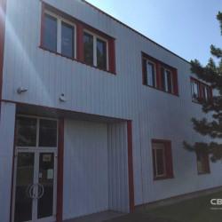 Location Bureau Fegersheim 515 m²