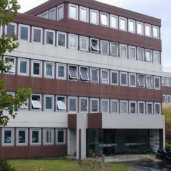 Location Bureau Marly-le-Roi 368 m²
