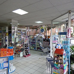 Location Local commercial Noisy-le-Sec 154,5 m²
