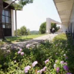 Location Bureau Valbonne 9631,88 m²