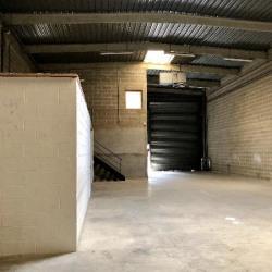 Vente Local d'activités Torcy 292 m²