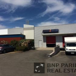 Location Local d'activités Basse-Goulaine 231 m²