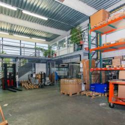 Location Local d'activités Nanterre 384 m²