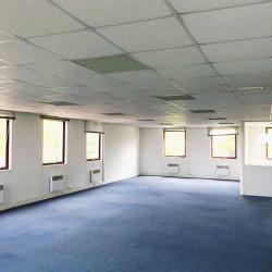 Location Bureau Saint-Germain-en-Laye 200 m²
