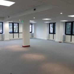 Location Bureau Saint-Germain-en-Laye 313 m²