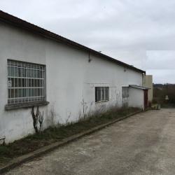 Vente Local d'activités Linas 500 m²