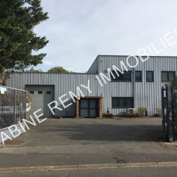 Location Local commercial Champigny-sur-Marne 600 m²