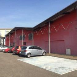 Location Local d'activités Portet-sur-Garonne 1050 m²